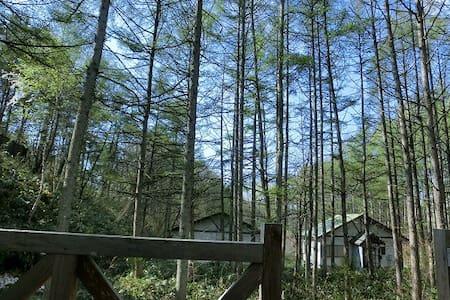 別荘地で1戸建て - Nagano-shi