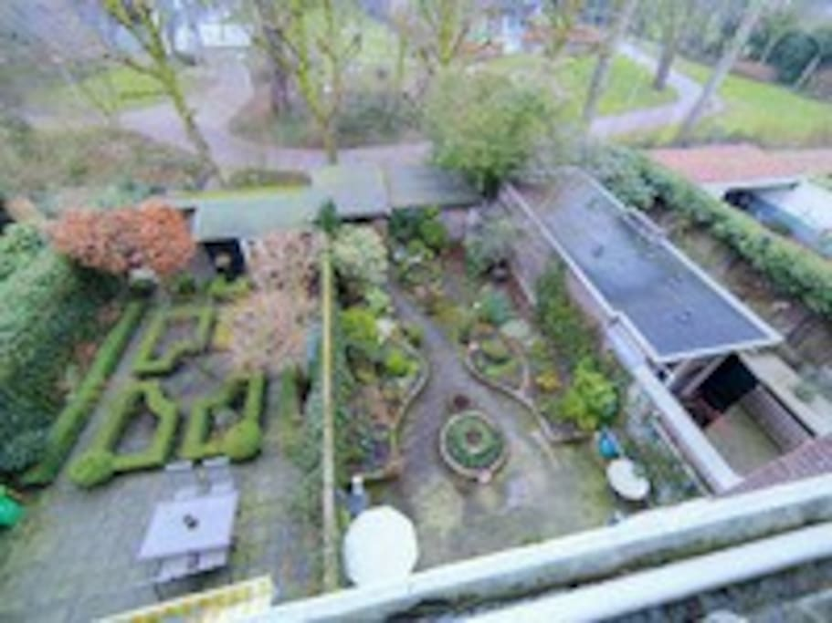 View from the room into the garden