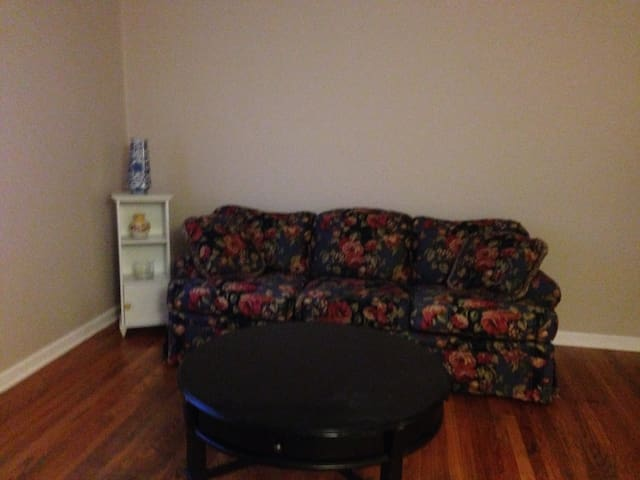 Cozy Apartment in Midtown KC