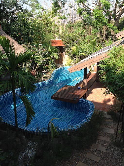 Lana Style Pool House Room 1 Bungalows For Rent In Chiang Mai Chiang Mai Thailand
