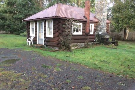 The Original Tiny Log Cabin
