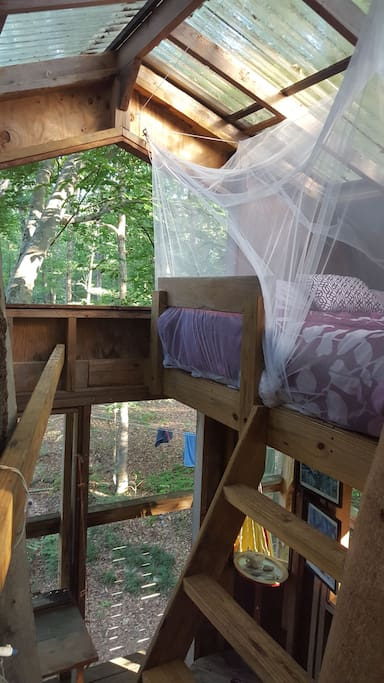 Mosquito Net over Queen Bed