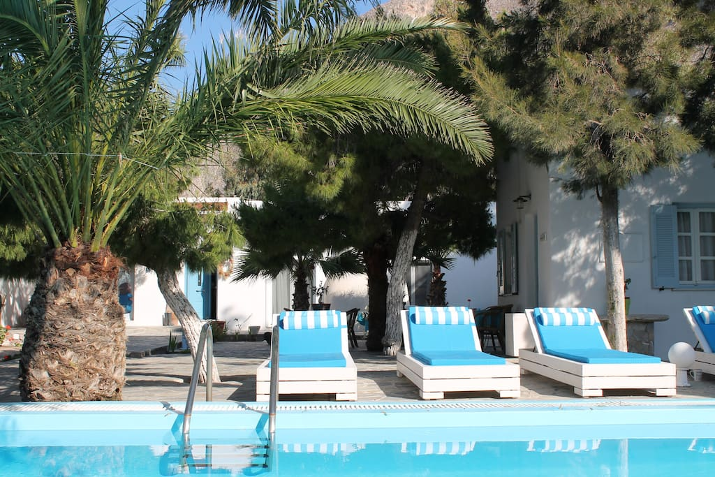 The shared pool with the sunbeds