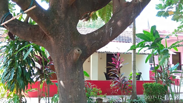 Omkar guest House breat fruit tree non AC room 5