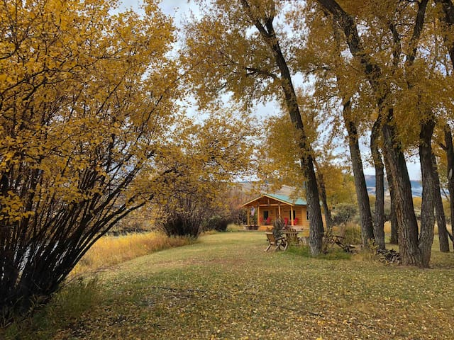 Cabin on the Wind River-Oct dates still available!