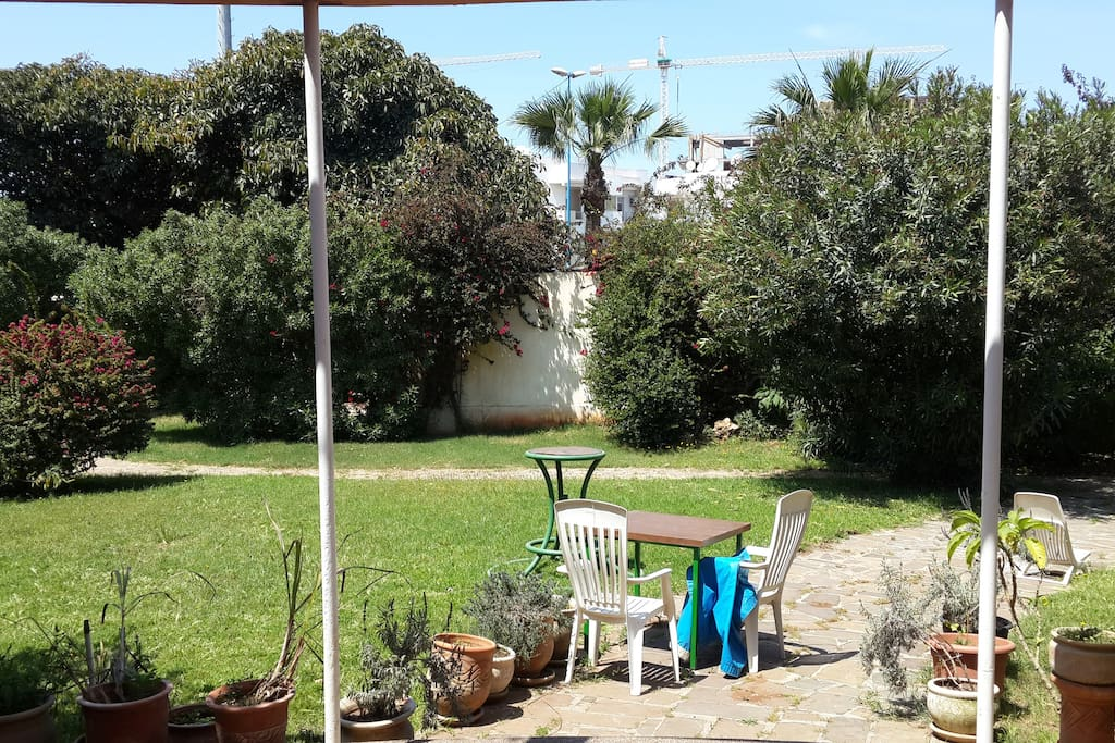 vaste jardin avec balancelle et trampoline
