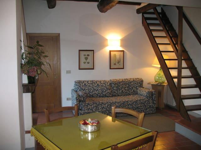 Appartamento in antica colonica - Medicina - Pis