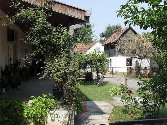 Authentic Serbian Rural Heaven - Ribari - Bed & Breakfast