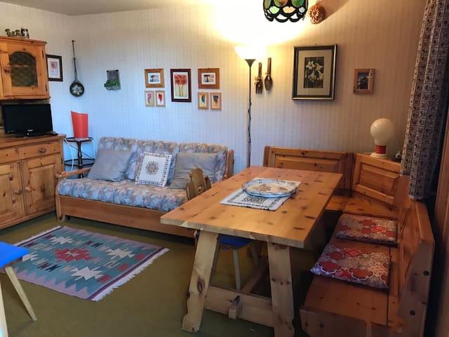 Appartamento a 50 mt dalle piste da sci