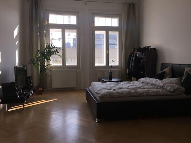 Wunderschönes Altbauzimmer (3.Bezirk) - Vienna - Lejlighed