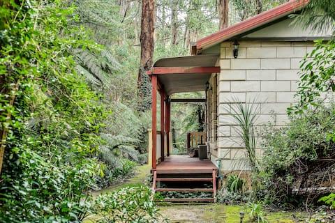Isolated Cottage @ Fernglen, near Olinda,sassafras