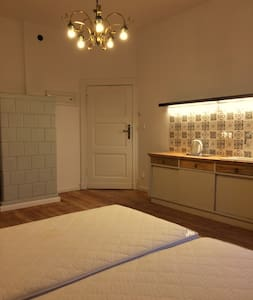 Bright and Spacious Studio in the city centre - Poznań