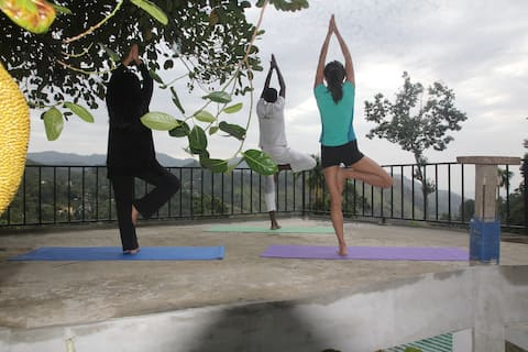 Daily Yoga Classes at the Ella yoga hub with Accommodation  (Privet and Group Classes) Our Sri Lankan yoga seeks to improve the mind-body balance through a focus on muscle tone, strength, and stamina. With regular practice with Sri Lankan meditation.