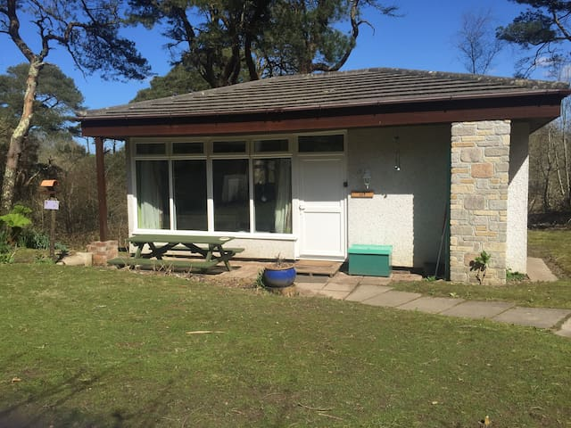 2 Bed Holiday bungalow by woodland,Nr St Ives - Lelant - บังกะโล
