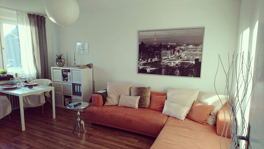 55 qm cosy apartment by central station and city