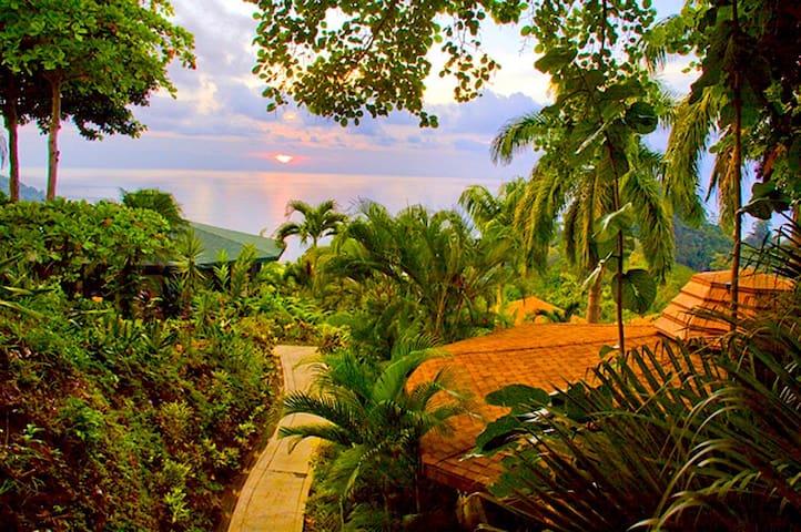 Tulemar Bungalow 111-Ocean view, 1 bdr, Beach - Manuel Antonio - Casa