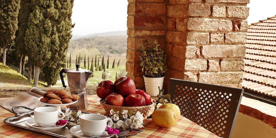 Il Castagno: VALLE - Gambassi Terme - Apartment