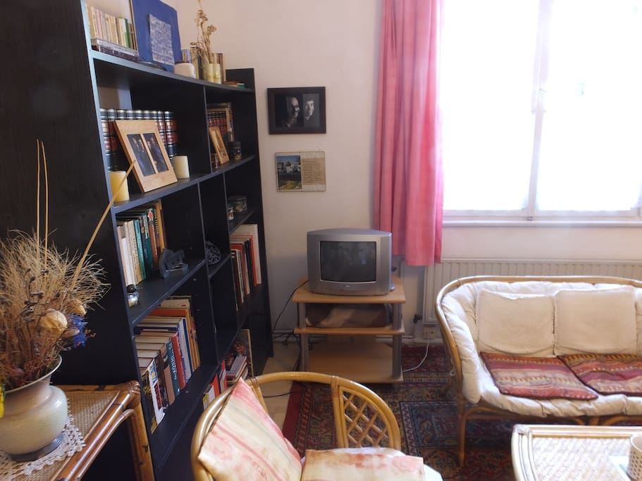 TV and bookshelf.