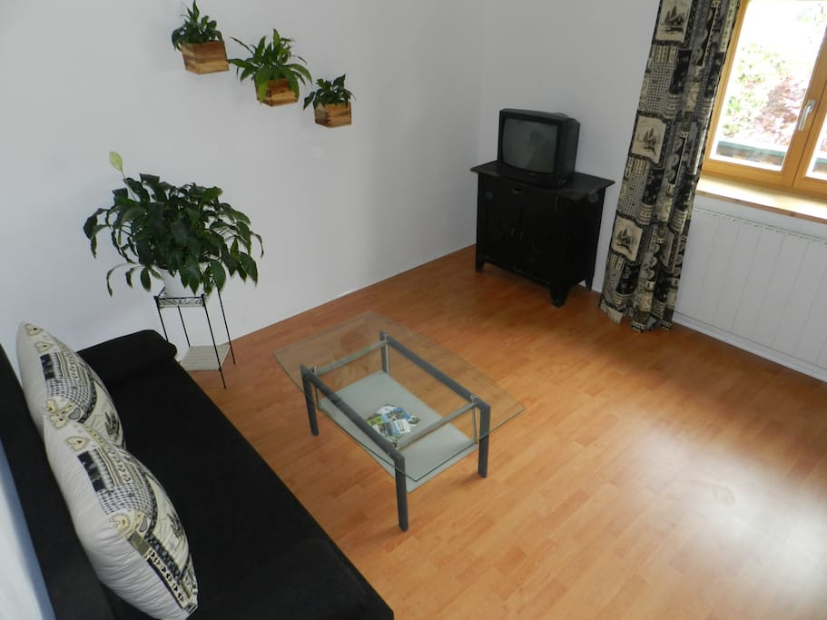 Wohnzimmer mit ausziehbarer Schalfcouch