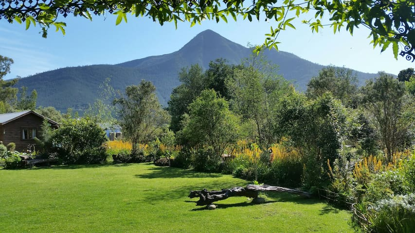 R&C's Garden Pear Tree Cottage - Stormsrivier - Stuga
