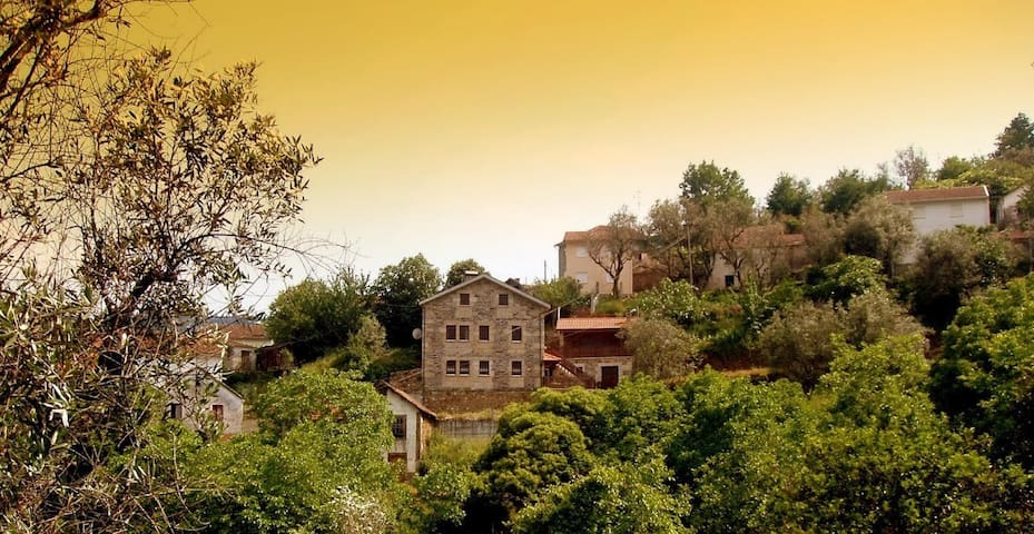 Casa Carolina - Viseu/ Castro Daire/ Viseu - Villa
