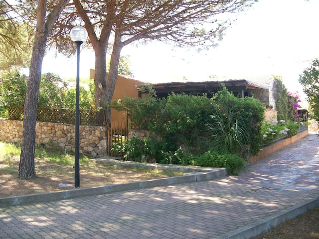 Daniel House  in Baja Sardinia - Baja Sardinia - Villa