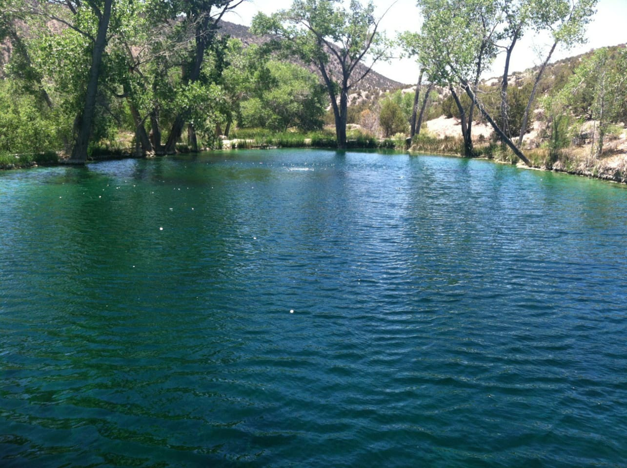 Nothing like a dip in our spring fed pond to cool off after a hike into the box canyon or along the western hills.