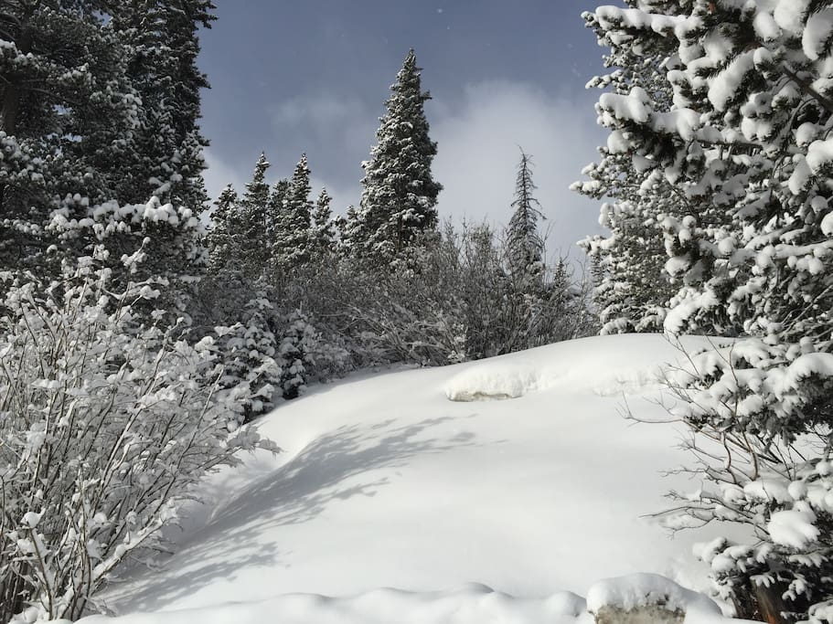 Winter wonderland- 10 minutes to the Breck gondola lot!