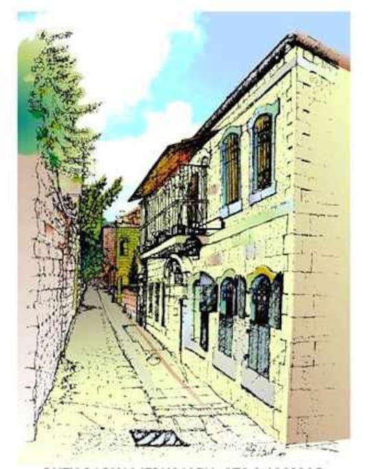 Our quiet, pedestrian street