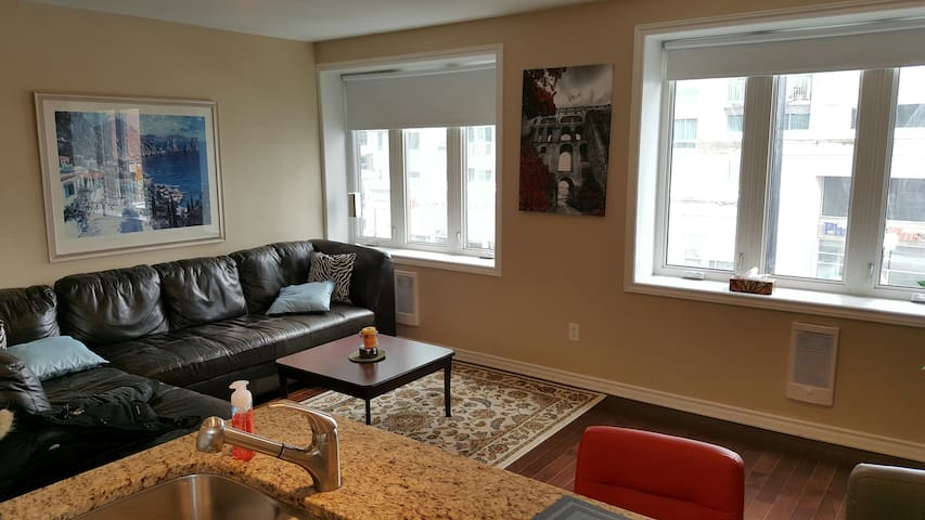 Heart of Downtown Ottawa 1-bedroom apartment. - Ottawa - Leilighet