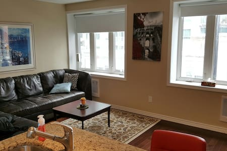 Renovated 1-bedroom Apartment in Heart of Downtown - Ottawa - Daire