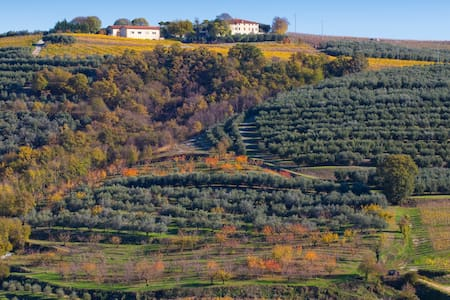 Agriturismo Casa Zen - Marcellise di San Martino Buon Albergo