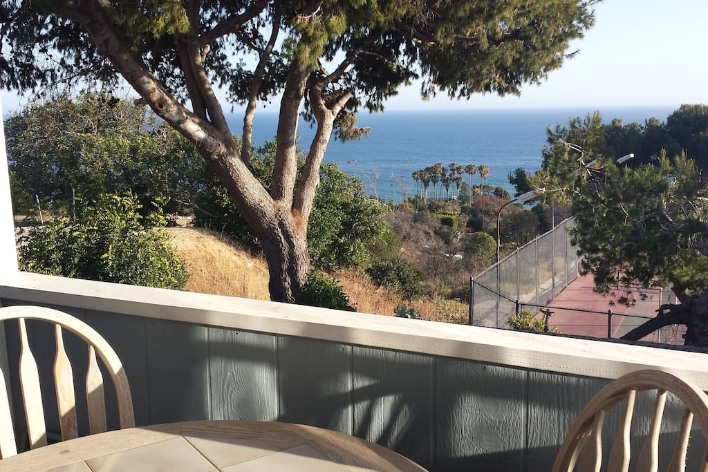 Whale watching right from your comfy patio!