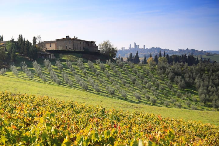 """Farmhouse Apt. in Tuscany """"THE ONE"""" for 4+2 guests"""