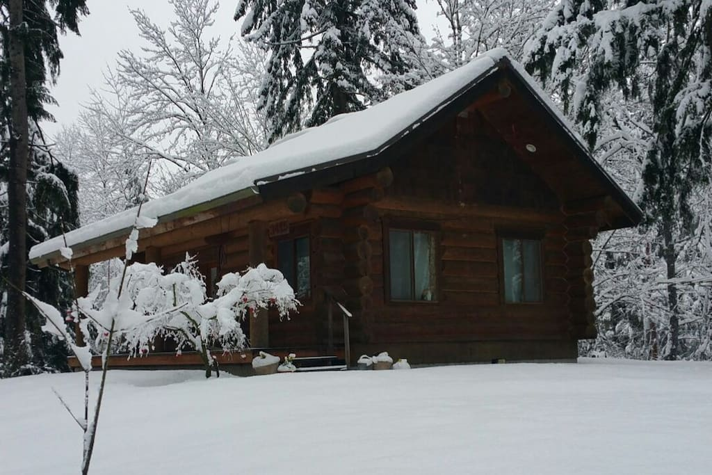 Snow day Feb 2017 -Our first real snow in 10 years, but the cabin is warm and cozy