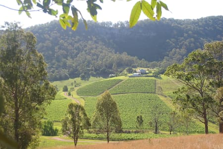 The Wynella Homestead, Mount View, Hunter Valley - House