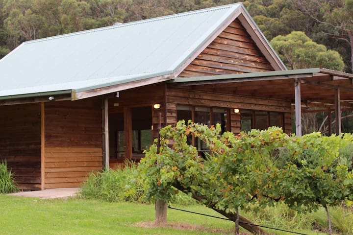 Cellar Door in the Vineyard