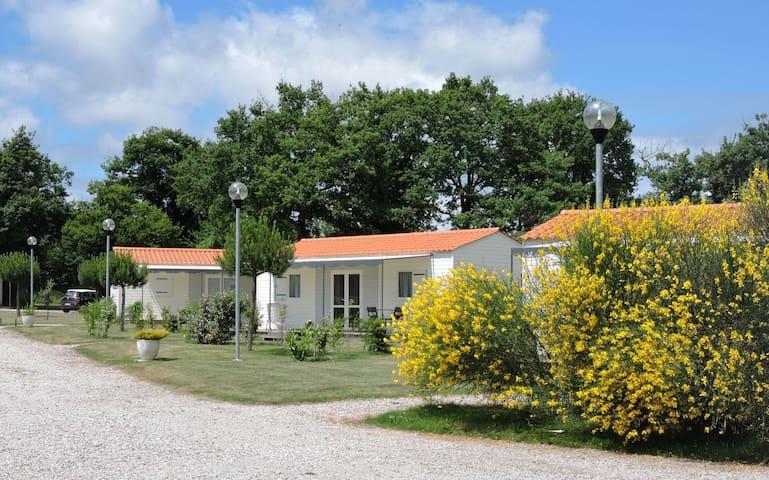 Maison de 40 m2 au calme, à 10 mn du centre ville
