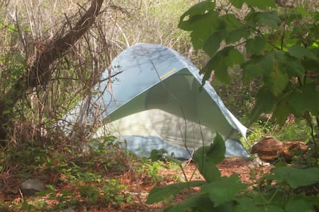 A Tent with Pad