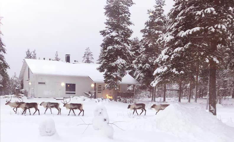 Rovaniemi Home near Santa Claus at Napapiiri