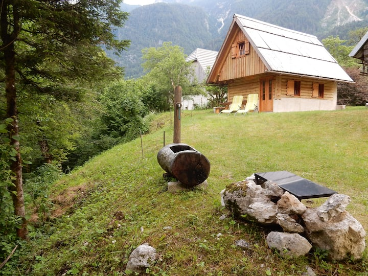 Little cottage Vrsnik with mountain views