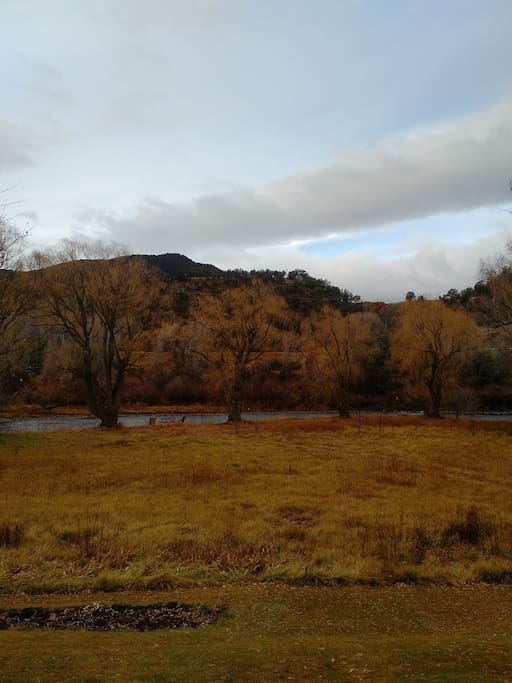 View of Roaring Fork River