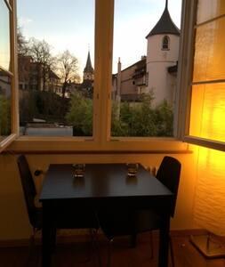 Best address in Zürich with amazing views oldtown - Zürich