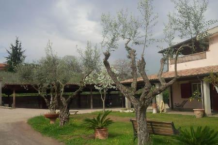 Villa, cozy room, private bath - Frascati - Villa