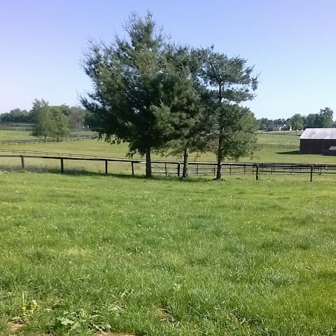 Minutes from Kentucky Horse Park