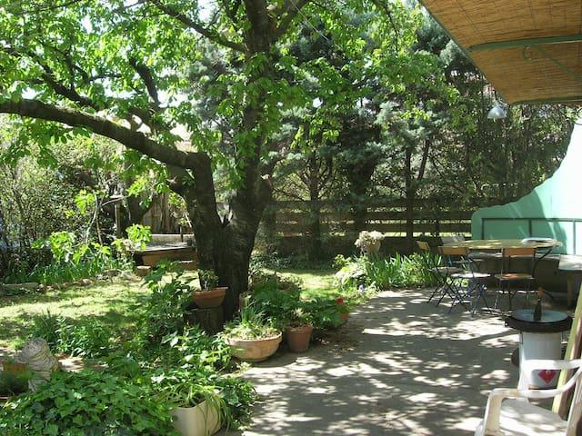 Petit déjeuner dans jardin ombragé