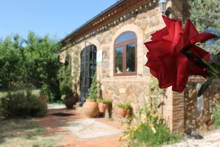 casa en parque natural aracena - Aracena