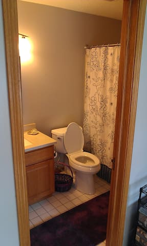 Bright Room & Full Bath w/TV/DVD - Kalamazoo - House