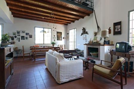 Sicilian Country House - Villa