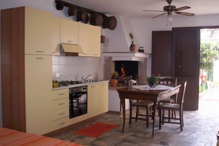 Apartment 800 meters from the sea. - Santa Maria al bagno - Apartment